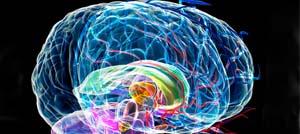Il campo di energia emesso dal Cervello e la sua influenza sulla realtà