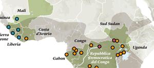 Prevenzione e cure naturali contro il Virus Ebola