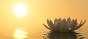 Spiritualità: perché è così importante?