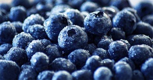 Maqui: i frutti più antiossidanti al mondo