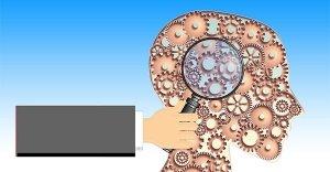 Come funziona il cervello?