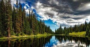 Che cos'è il disturbo da deficit di natura?