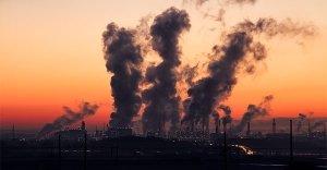 Inquinamento ambientale e salute: intervista alla dottoressa Patrizia Gentilini