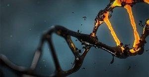 Androidi, biochip, menti biologiche artificiali, manipolazione del DNA: intervista a Marco Pizzuti