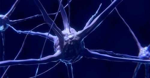 Epigenetica e controllo della mente sui nostri geni