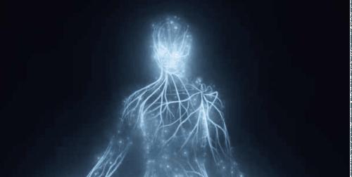 Il corpo risonante e le terapie di informazione biofisica