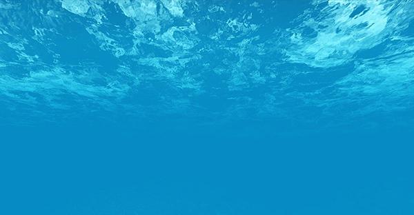 I Campi Morfogenetici e l'Acqua