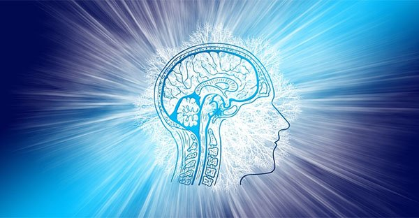 Cervello, processi quantistici e coscienza non locale