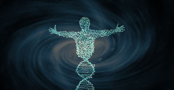 Epigenetica: l'Occidentalis Karma