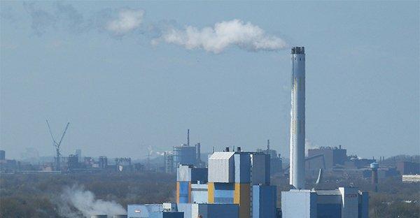 Stop agli inceneritori e all'inquinamento: la lunga lotta delle mamme di Venafro