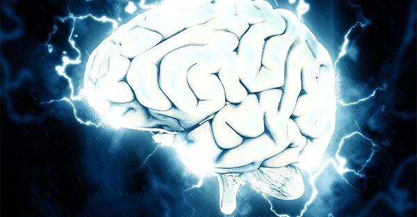"""Perché l'intestino è chiamato anche """"secondo cervello""""? Scopriamolo nel libro """"Buona Cacca a Tutti"""""""
