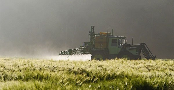 Clorpirifos: sai che cos'è e perché è chiamato il pesticida killer?