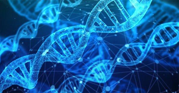 Epigenetica e PNEI in medicina: ce ne parla Giovanni Abbate Daga che sarà presente al Congresso SaluScienza