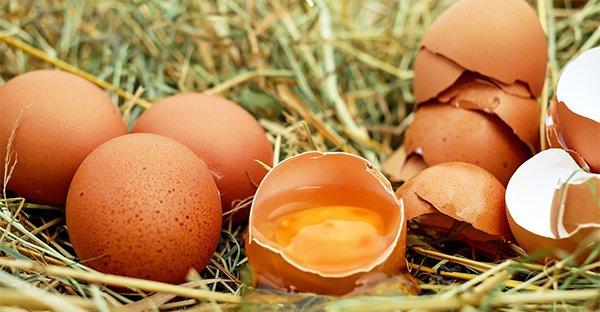 Le uova sono un super alimento: ce lo spiega la dottoressa Debora Rasio