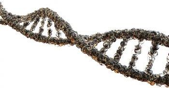 Tecnologia 5G: modifica il nostro DNA risuonando con le sue strutture frattali
