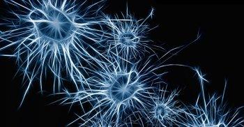 Il pensiero ha il potere di modificare e organizzare il cervello, il corpo e l'ambiente: ce ne parla l'oncologo Claudio Pagliara