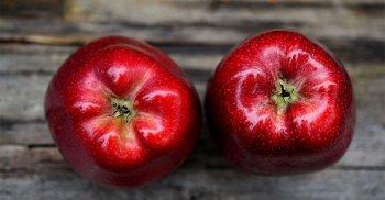 Dieta Fuhrman: perché consumare alimenti vegetali?