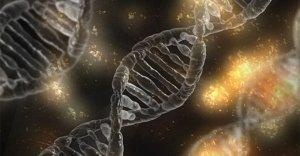 L'impronta dell'entropia nella fisiologia umana - seconda parte