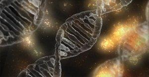 Che cos'è l'Epigenetica?