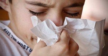 Rafforzare il sistema immunitario: quali integratori scegliere?