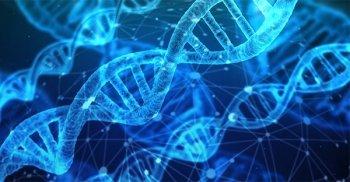 Epigenetica e PNEI in medicina: intervista al professor Giovanni Abbate Daga