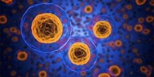 Tumore, acidità e inibitori di pompa protonica