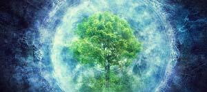 La coscienza: oltre i confini del nostro essere