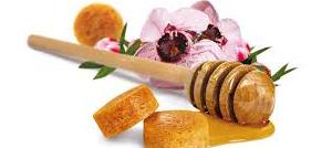 Il miele di fiori di Manuka: uno dei più potenti antibatterici naturali al mondo