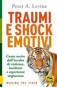 Traumi e Shock Emotivi - Libro