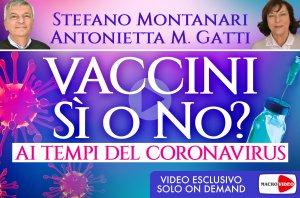 Stefano Montanari - On Demand