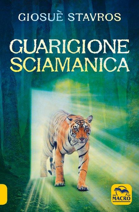 Guarigione Sciamanica - Libro